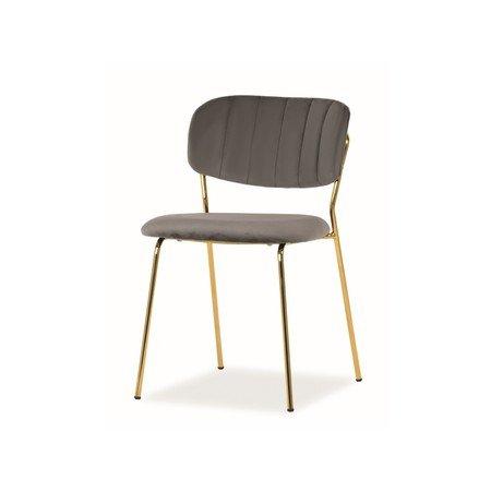 Židle CARLO zlatá/šedá