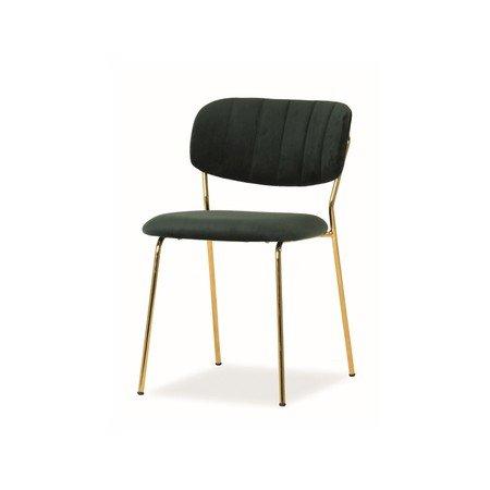 Židle CARLO zlatá/zelená
