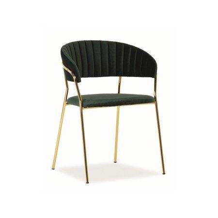 Židle LIRA zlatá/zelená